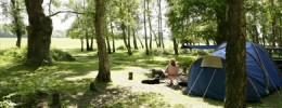 desktop-didyouknow-camping-1-New-Forest-Destination-Partnership(w390px_h150px)